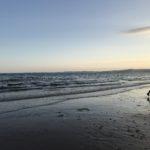 Spiritual Devon Coastline